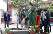 सम्माननीय राष्ट्रपति श्रीमती विद्यादेवी भण्डारीज्यूद्वारा विश्व वातावरण दिवसको अवसरमा राष्ट्रपति भवन परिसरमा वृक्षारोपण सम्पन्न